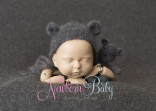 Dark Grey Backdrop & Bear Bundle